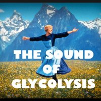 The Sound of Glycolysis!